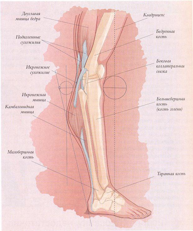 Изображение - Йога для начинающих с поврежденными коленными суставами 17c51932161b37cd26074208be28863e