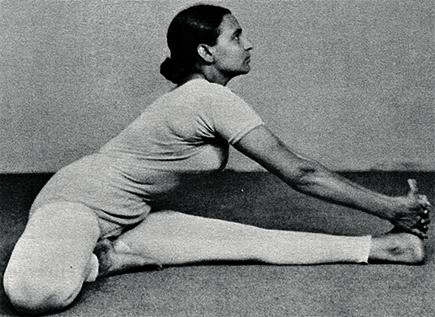 айенгар гита йога для женщин скачать